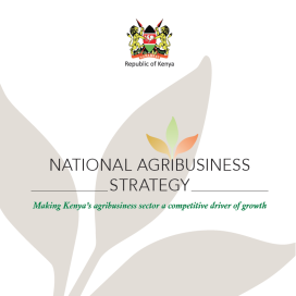 Kenyan Agribusiness Strategy