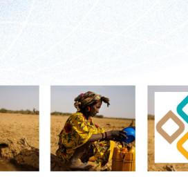 CARIAA Global Communication Strategy